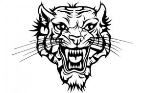 Тигр знак зодиака по китайскому календарю