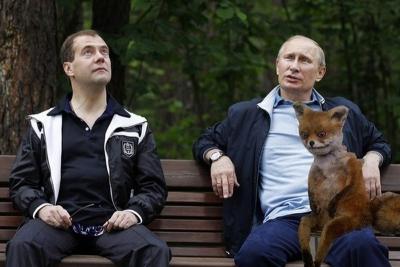 Лиса, Путин и Медведев