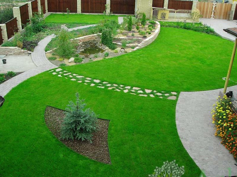Как посеять газон?