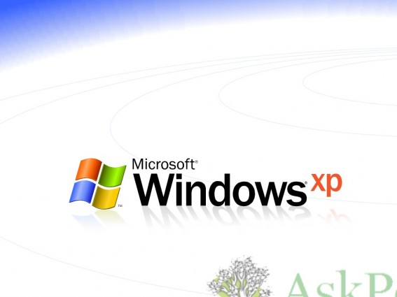 XP White
