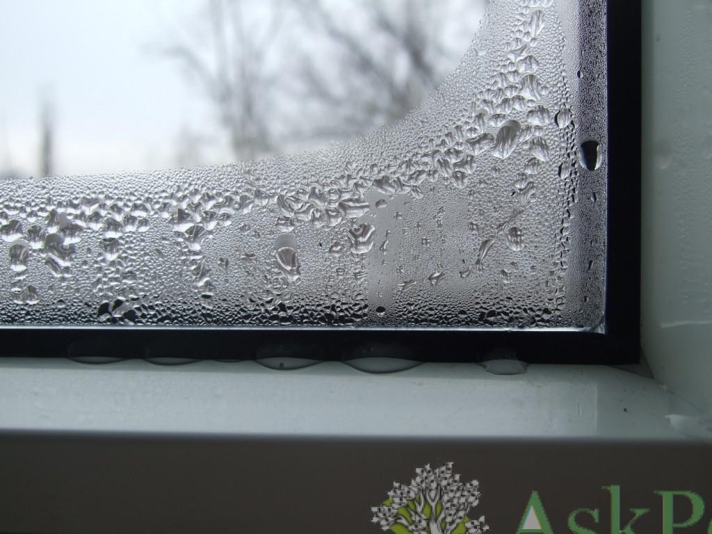потеют пластиковые окна изнутри