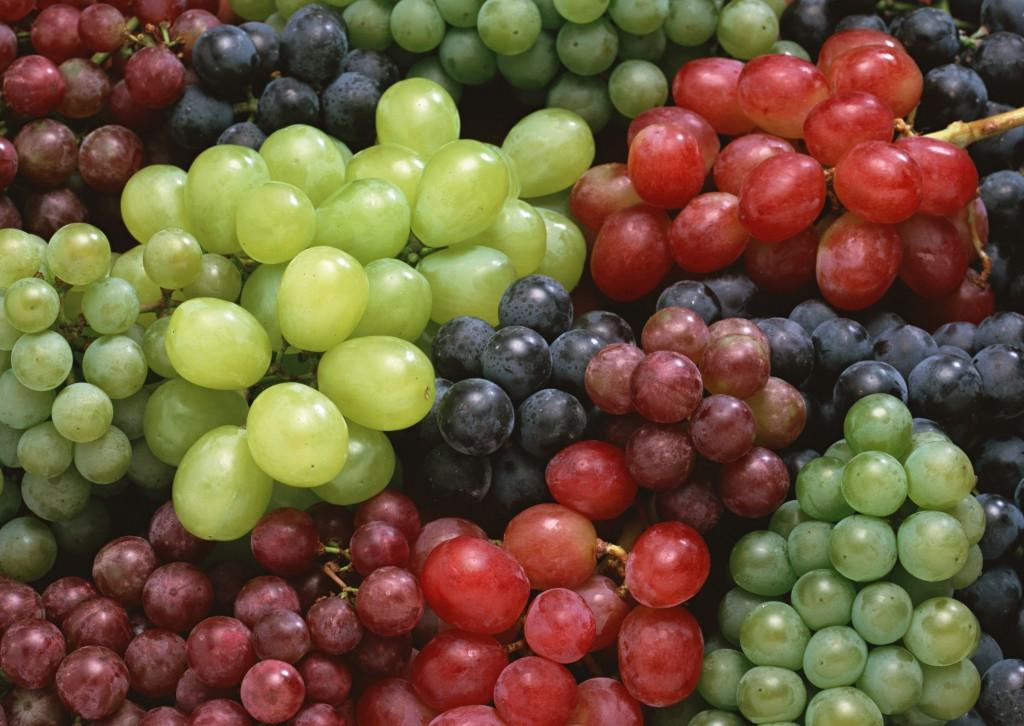 Когда нужно обрезать виноград