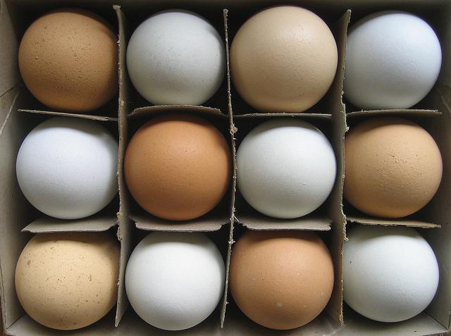 Сколько протеина в куринном яйце?