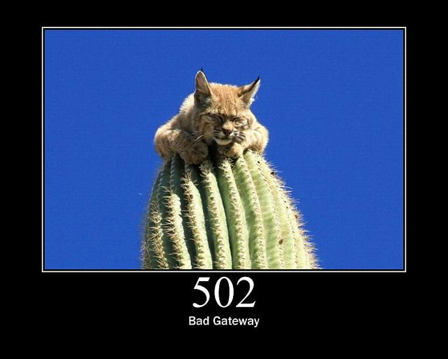 Что значит 502 bad gateway?