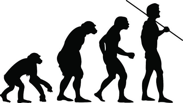 Почему эволюцию принято считать историческим процессом?